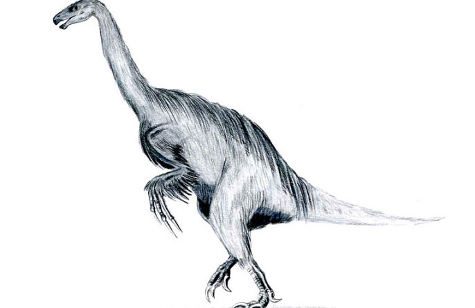 An artist's rendition of Erlikosaurus, depicted with feathers (Arthur Weasley)