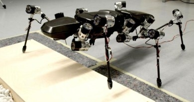 With elastic joints and six legs that function like those of a stick insect, Hector is the only walking robot of its kind. (Bielefeld University)
