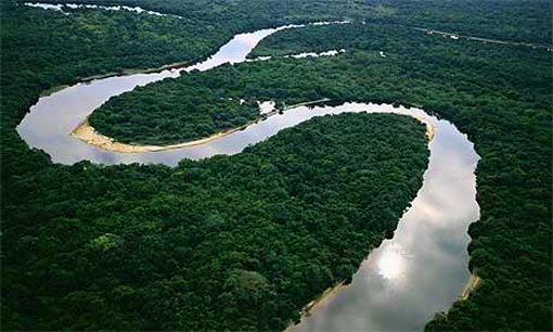 The Amazon Rainforest (Photo courtesy of Ron Gold via Flikr)