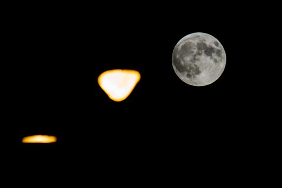 lunar eclipse 1, Max Goldberg
