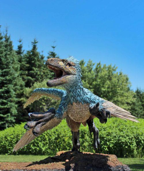 Dromaeosaurus outdoors 5