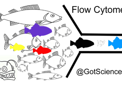 Flow Cytometry: Going with the Flow