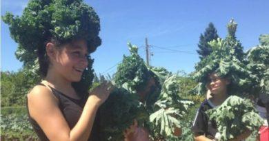 Urban Gardening Benefits Outweigh Lead Exposure Risk