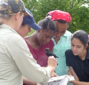 SciGirls in Denver learn about what makes a good urban bird habitat